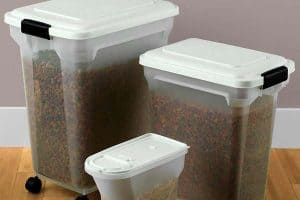 Best Dog Food Container