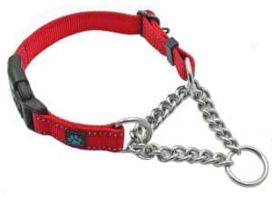 Max and Neo Stainless Steel Chain Martingale Collar