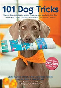 101 dog tricks step by step activities