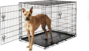 best wire dog crate frisco fold carry double door dog crate