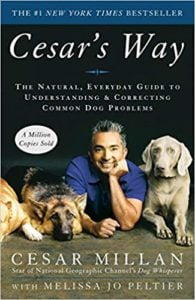 cesars way the natural everyday guide to understanding correcting common dog problems