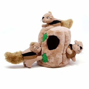outward hound hide a squirrel toy