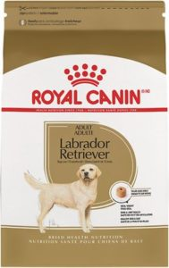 royal canin lab adult dry food